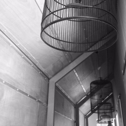 Birdcages for the hall